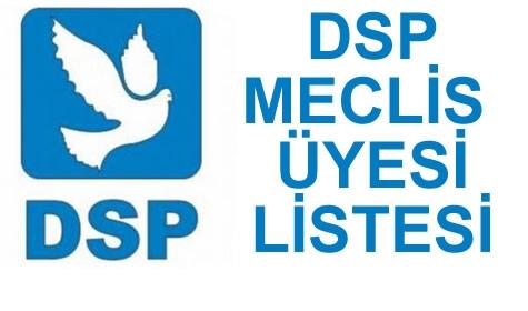 bafra-dsp-meclis-uyesi-listesi-8513