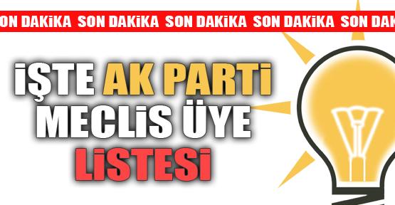 ALAPLI AKP LİSTESİ
