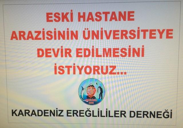 EREĞLİ'DE TOPLUMSAL HAREKET